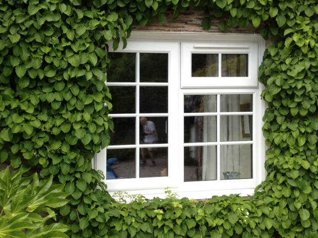 ivy surrounded upvc window